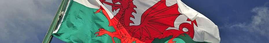 Voci in Gallese per voice over