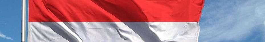 Voci in Indonesiano per voice over