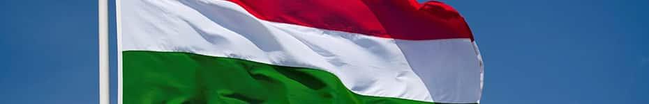 Voci in Ungherese per voice over
