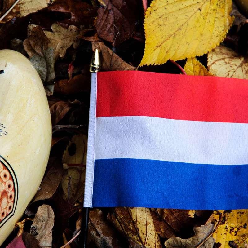 Olandese